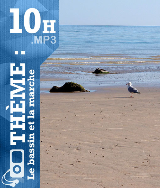 cover_bassin_et_marche