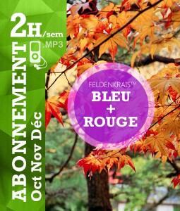 Feldenkrais bleu+rouge - Vladimir Latocha
